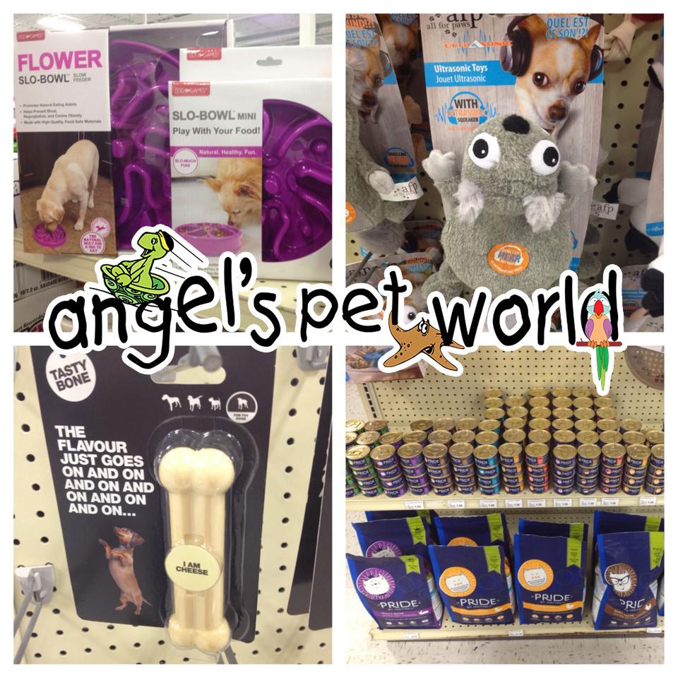 AngelsPetWorld_Toys