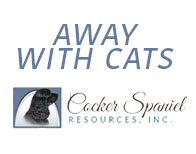 away-with-cats-cat-rescue-Angels_Pet_World