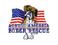 AcrossAmericaBoxerRescue