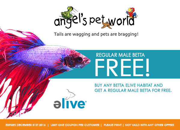 Elive-pet-food-dog-food-DogFood_Coupon_Elive_AngelsPetWorld