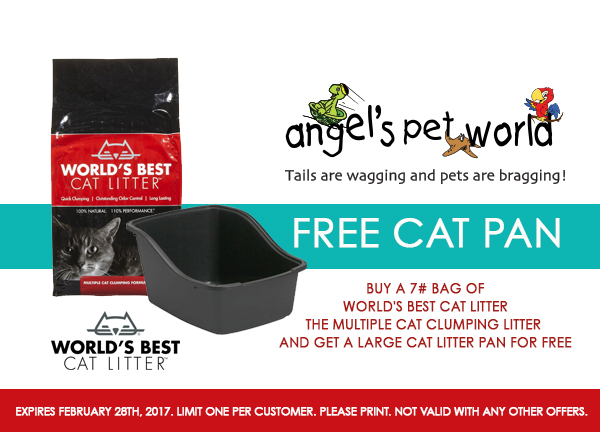 Worlds_Best_Cat_Litter_Pet_Supply_Greenies_Hudson_WI_Angels_Pet_World