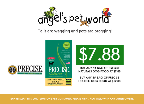 Precise Holistic Dog Food Reviews