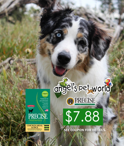 Buy American Natural Premium Dog Food Online