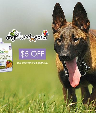 Vita Source Dog Food