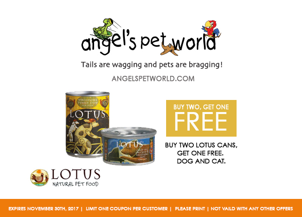 buy-one-get-two-Lotus-Angels-pet-world-pet-supply-hudson