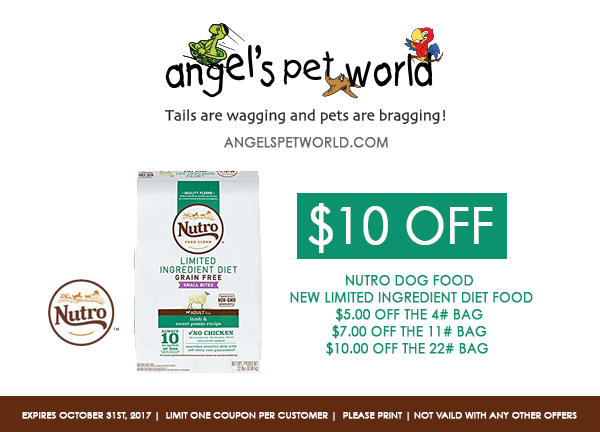 nutro pet food angels pet world pet supplies hudson wi