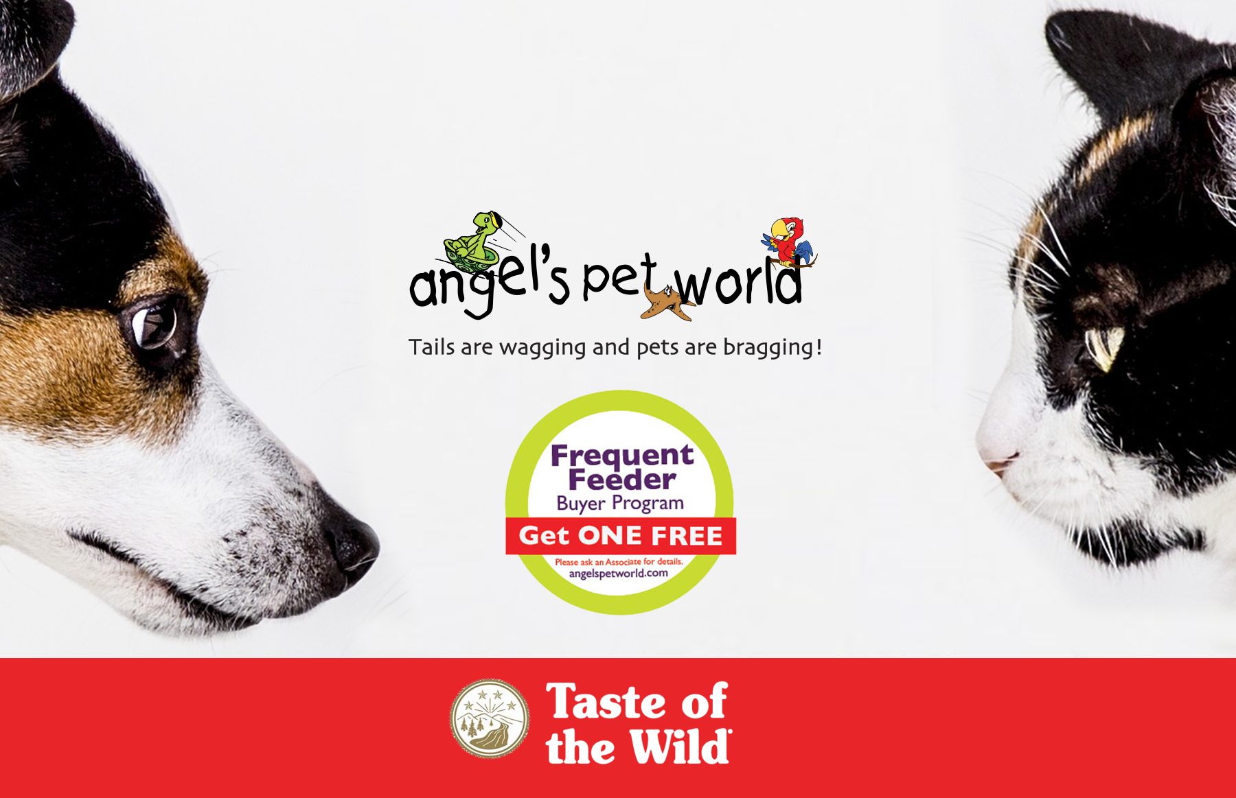 taste-of-the-wild-pet-supply-angels-pet-world-hudson-wi