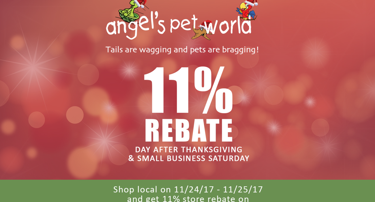 Day After Thanksgiving 11 Rebate 11 24 11 25 Angel S Pet World