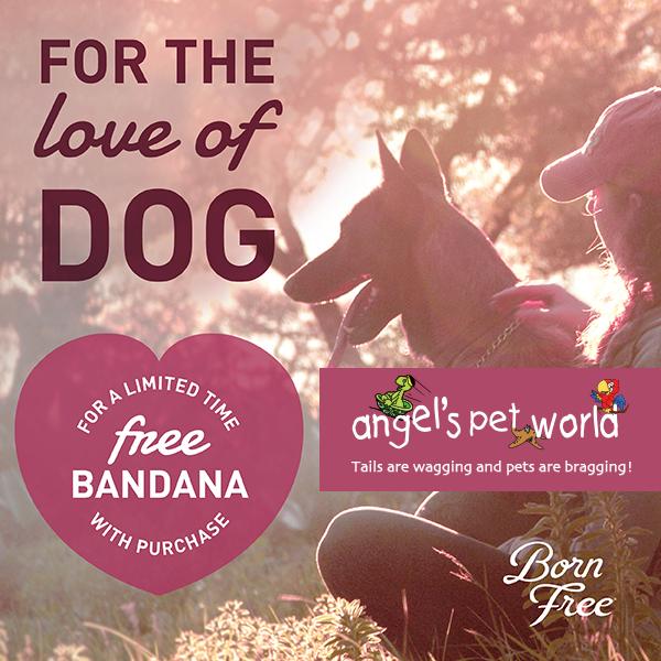 Angels-Pet-World-Facebook-Kick_Born_Free_Valentines_Promo_Social_011518-02
