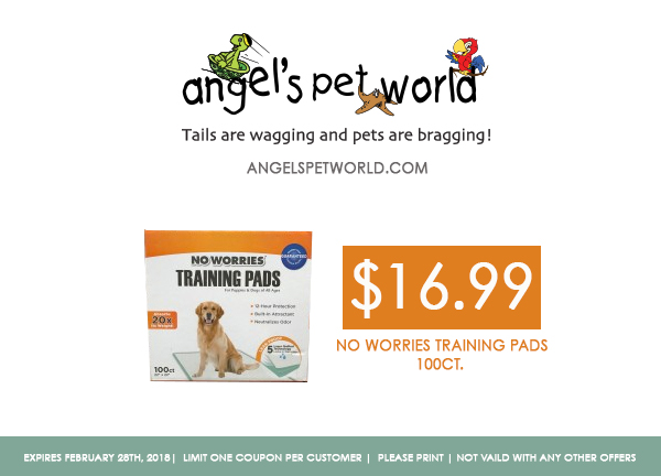 No Worries Training Pads-angels pet world pet supplies hudson wi