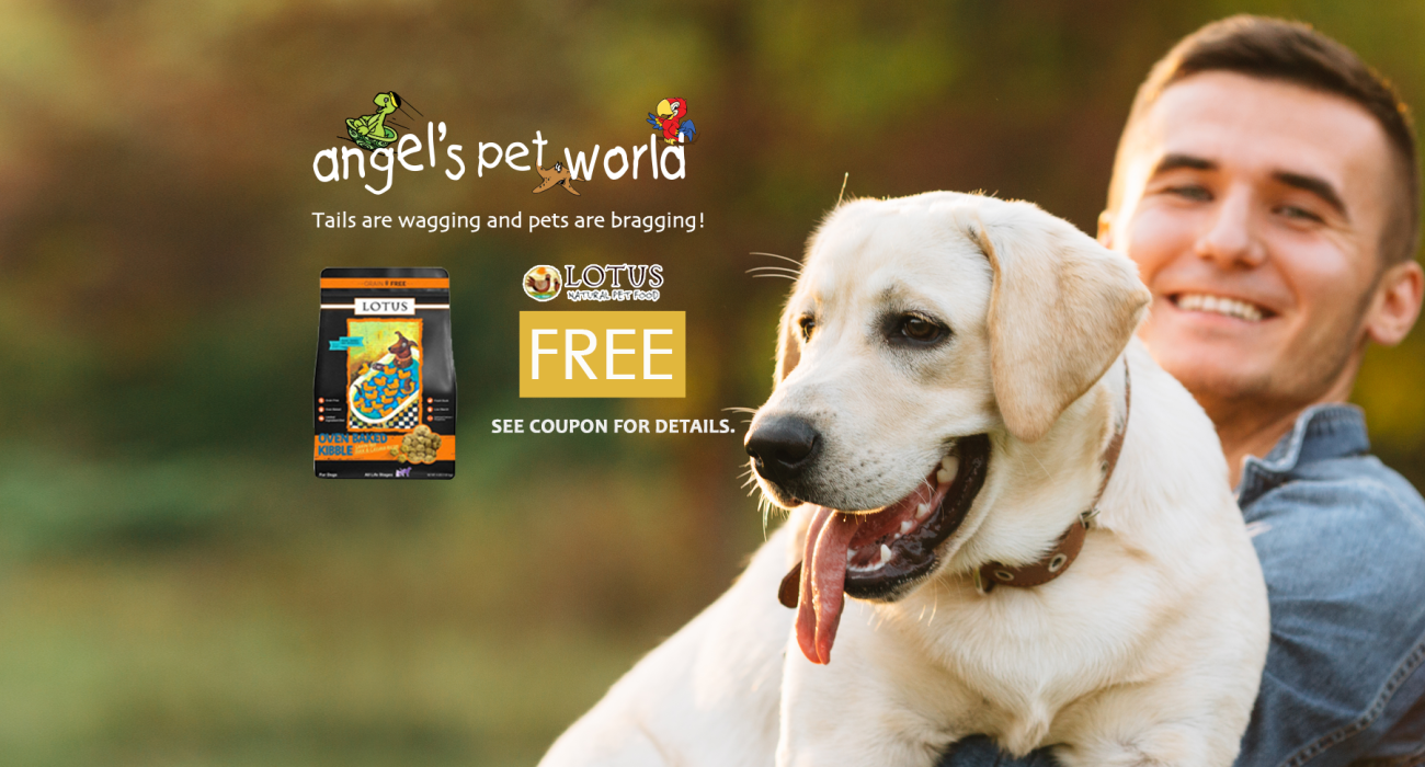 Lotus Dog Food Angel S Pet World In Hudson And River Falls