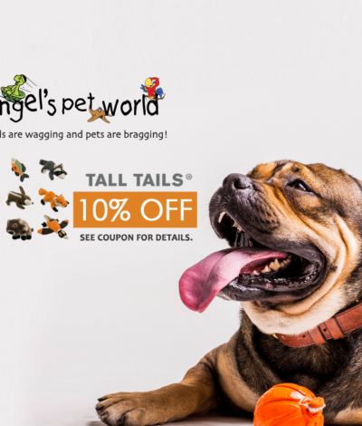 Angel's Pet World - Local Pet Store in Hudson and River Falls